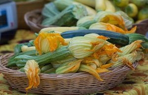 Squash Blossoms - Michael Moriarty Photography