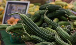 Armenian Cucumbers - Michael Moriarty Photography