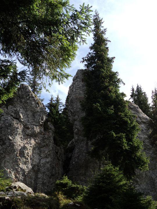 Huge stones agglomeration - rexalanii