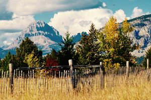 Crowsnest Mountain in Fall