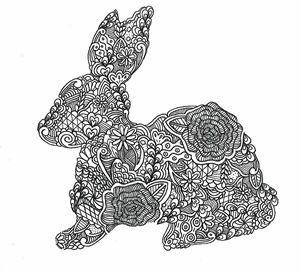 Zen Bunny