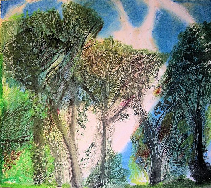 Back Yard Forest - Don Schaeffer's Gallery