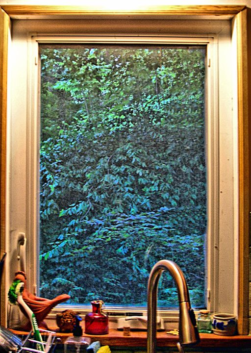 The Kitchen Sink - Don Schaeffer's Gallery