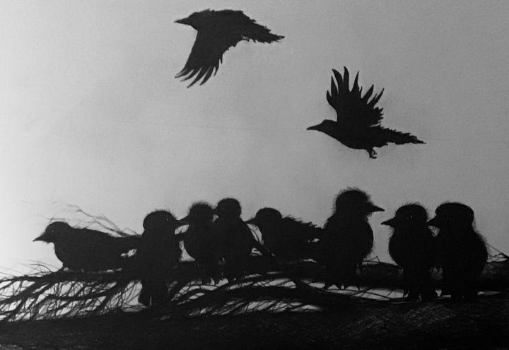 Crows - Vlasic