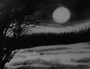 Cornfield moon