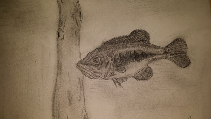 Lazy Largemouth - J.Benson artwork