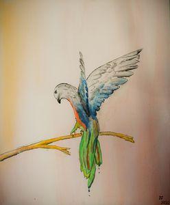 Passio 1 - Flock