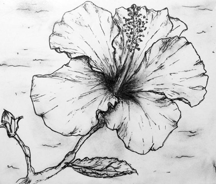 Flower Sketch - Dawning Arts