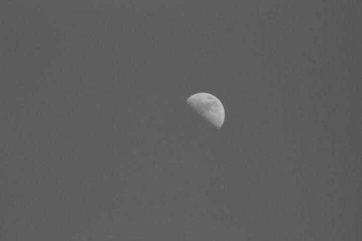 The moon - Kate-Ann Art and Photography: Stephanie Perry