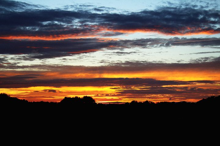 Orange and Pink Sunset - Ashley Schwoebel