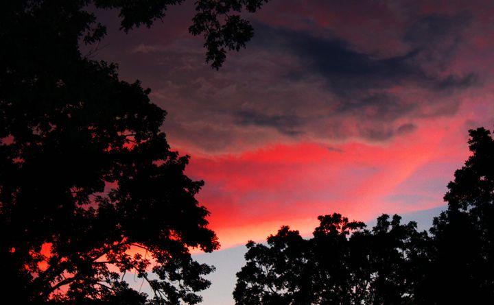 Black and Pink sunset - Ashley Schwoebel