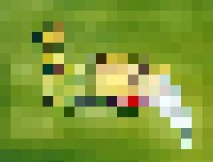 Green Lady - SkyCrystal Art