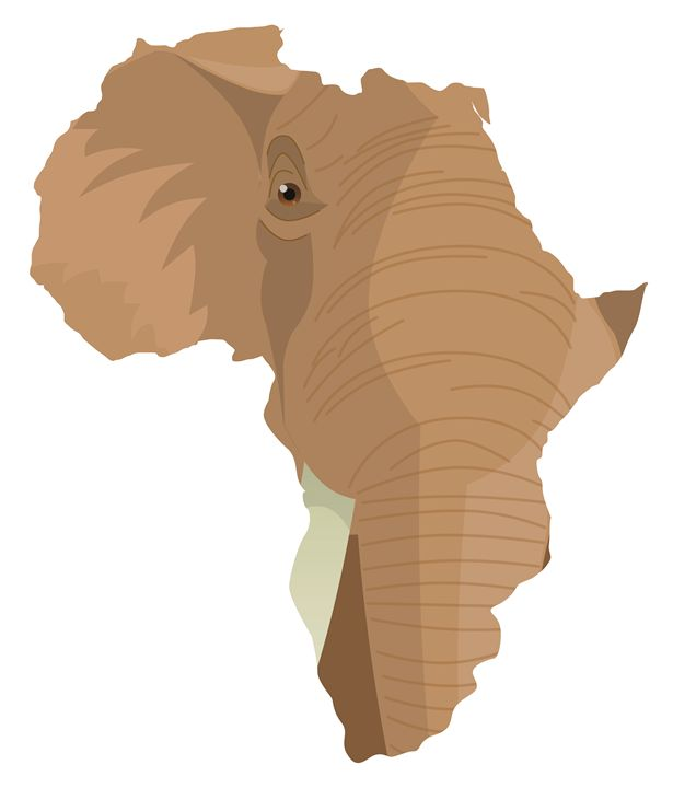 African Elephant - Gaynore