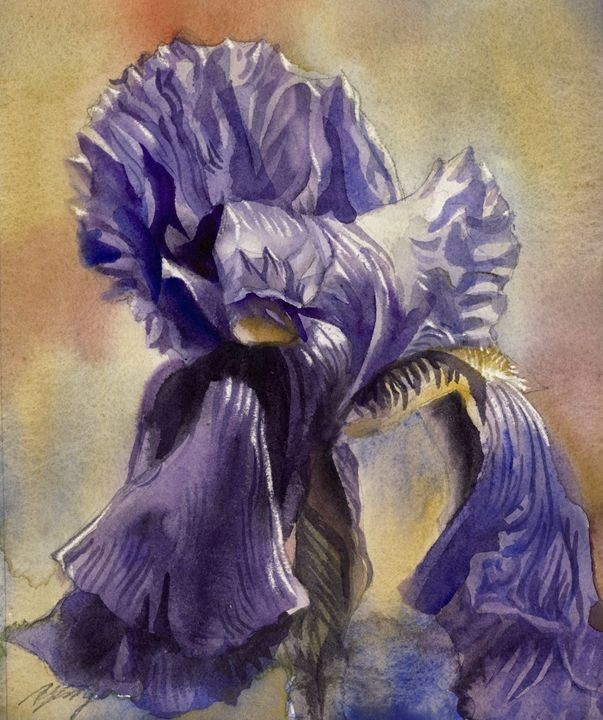 Iris in blues - floral watercolor