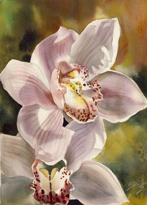 Pink Cymbidium Orchid - floral watercolor