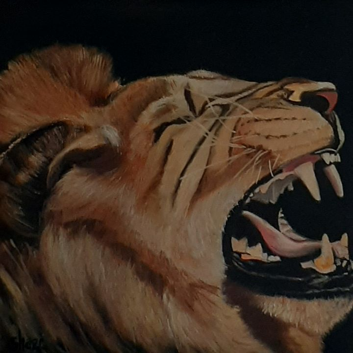 Yawning Lion - Fourie Collection - SA Colour Creations
