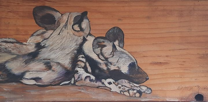 Wild Dogs - Fourie Collection - SA Colour Creations