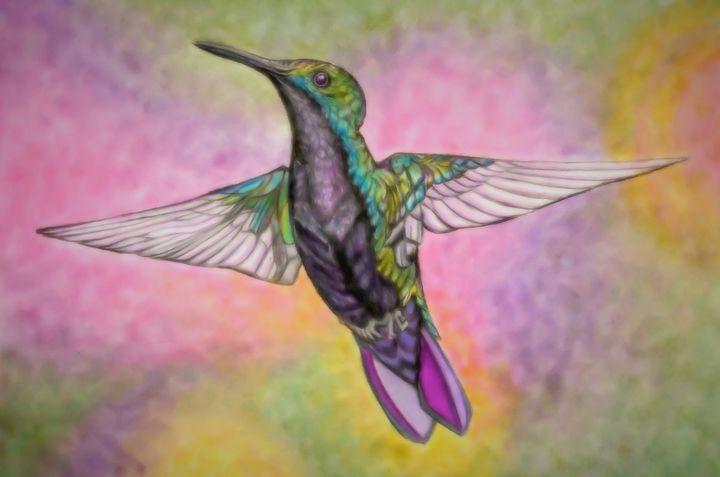 Little Hummingbird - AndreaHayesArt