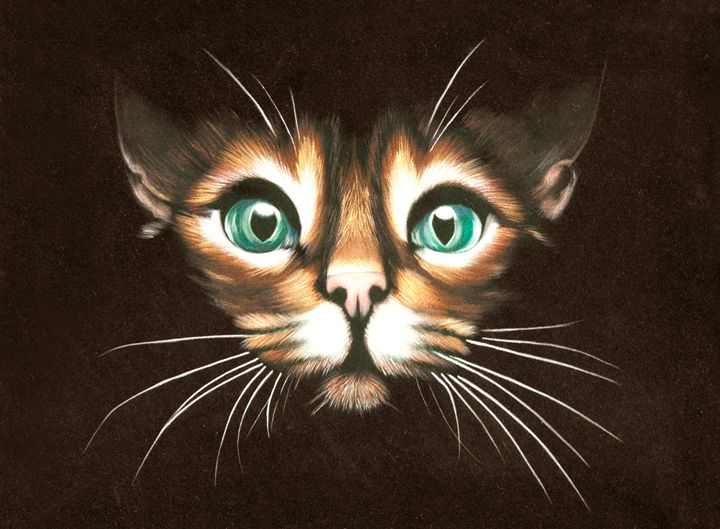 cat with wide open eyes - LeoVart