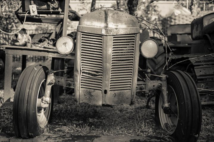Rusty Old Ford Vintage Farm Tractor - Dogford Studios
