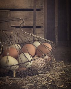 Eggs in vintage wire egg basket