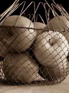 Apples in a wire basket sepia toned