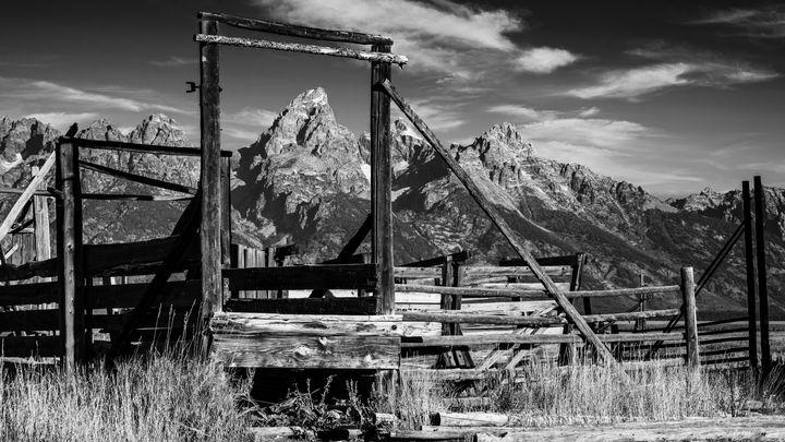 Tetons Corralled - Stephen Stookey Photography