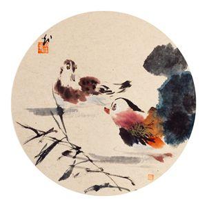 Talking Lover Birds