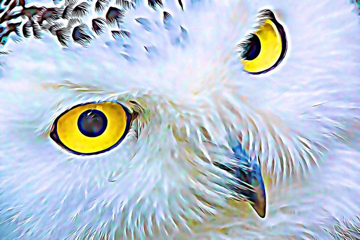 Owl Presence - Mystic Muse