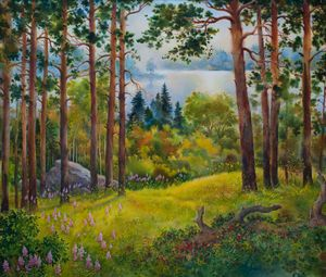 """""""Nothern forest in the morning"""""""