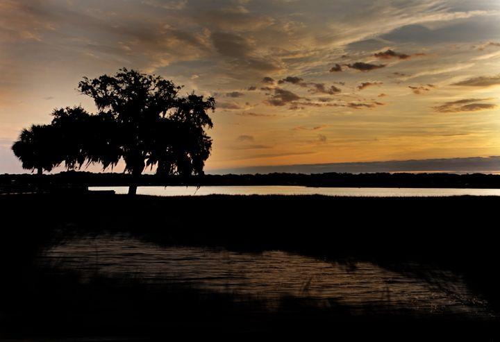 The Puddle at Sunset Tree - Nan Mac