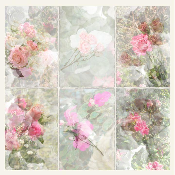 Le Rose (The Rose) - Nan Mac