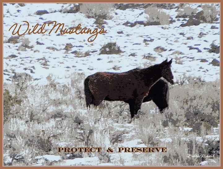 Wild Mustangs Protect & Preserve - Bobbee Rickard Art & Photography