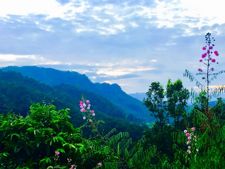 Sleeping beauty - SIDDHARTH THAKUR