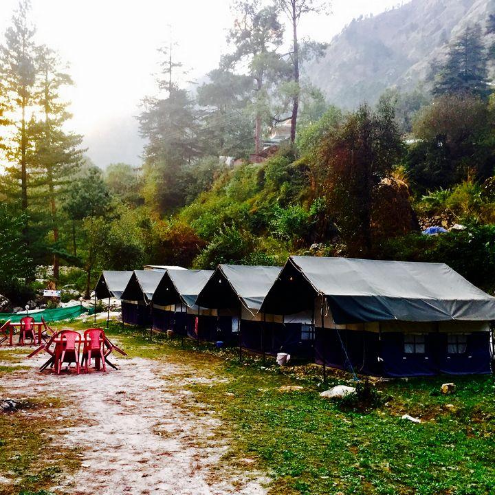 Wilderness - SIDDHARTH THAKUR
