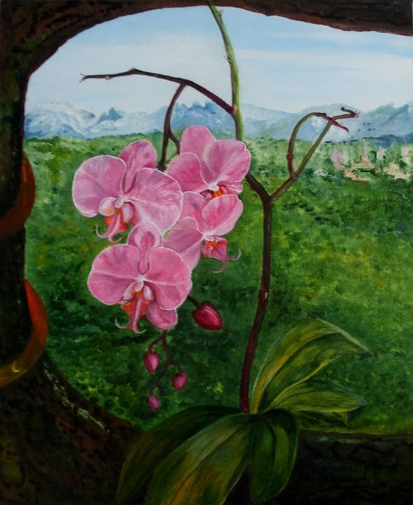 Pink Orchid - Alice