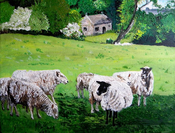 Sheep - Alice