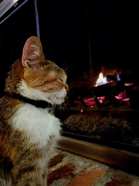 Fireplace - Lauren Knoblock