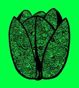 Lale green