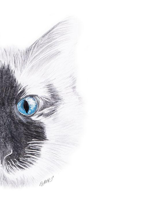 First Cat - BAVR art