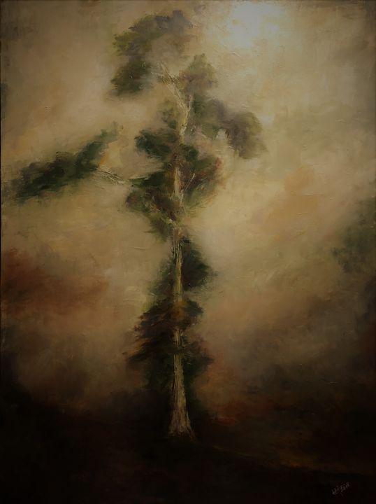 Eucalyptus Portrait - Terry Orletsky