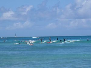 Waikiki Lineup