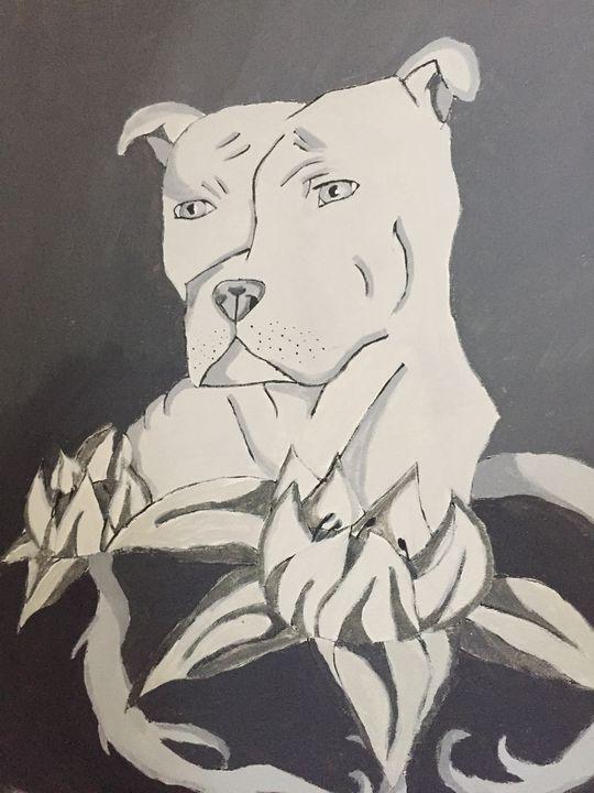 Pit bull - Mercatacorn