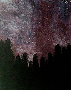 Galaxy in the Night
