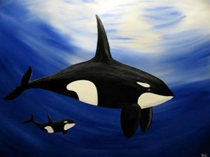 Female Orca and Baby