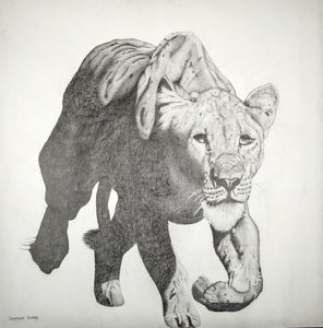 Prying Lioness