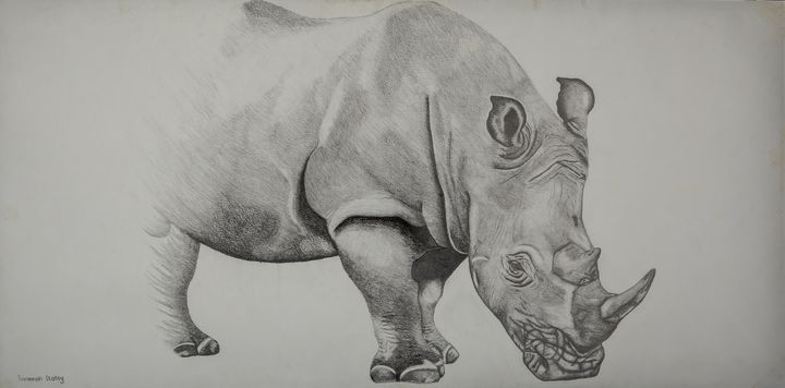 African Rhino - Road to Extinction - Wildlife art