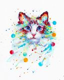 Cat watercolor Atye
