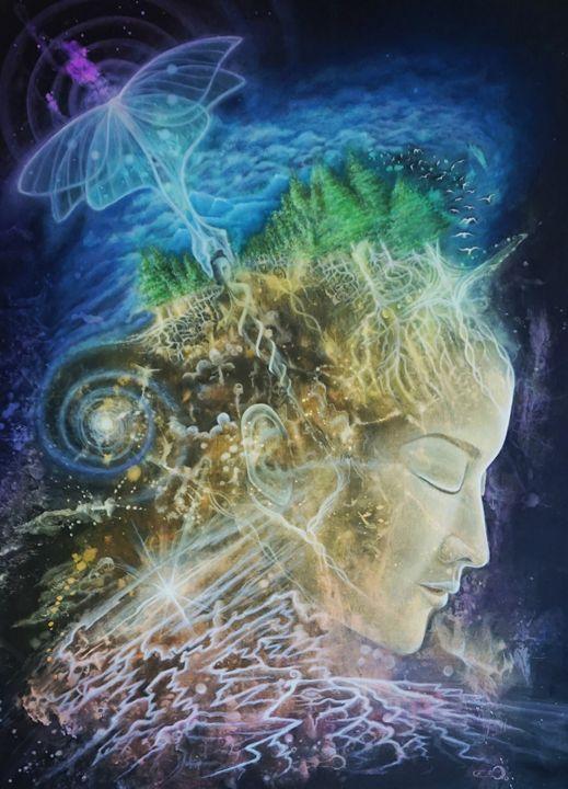 Meta Morph Osis - Exploring the dream