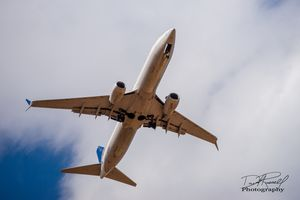 Up, Up and Away - David Russell Photography